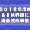 2018年度末 HR&HM界隈に見る海苔波形事情